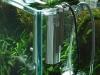 ADA Vuppa-I in acvariu