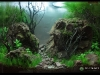 Barcelona Aquarium Meeting 2011 - Locul 1