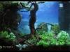 Barcelona Aquarium Meeting 2011 - Locul 2