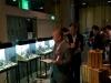 Iwagumi challenge @ Nature Aquarium Party 2011 - judecarea